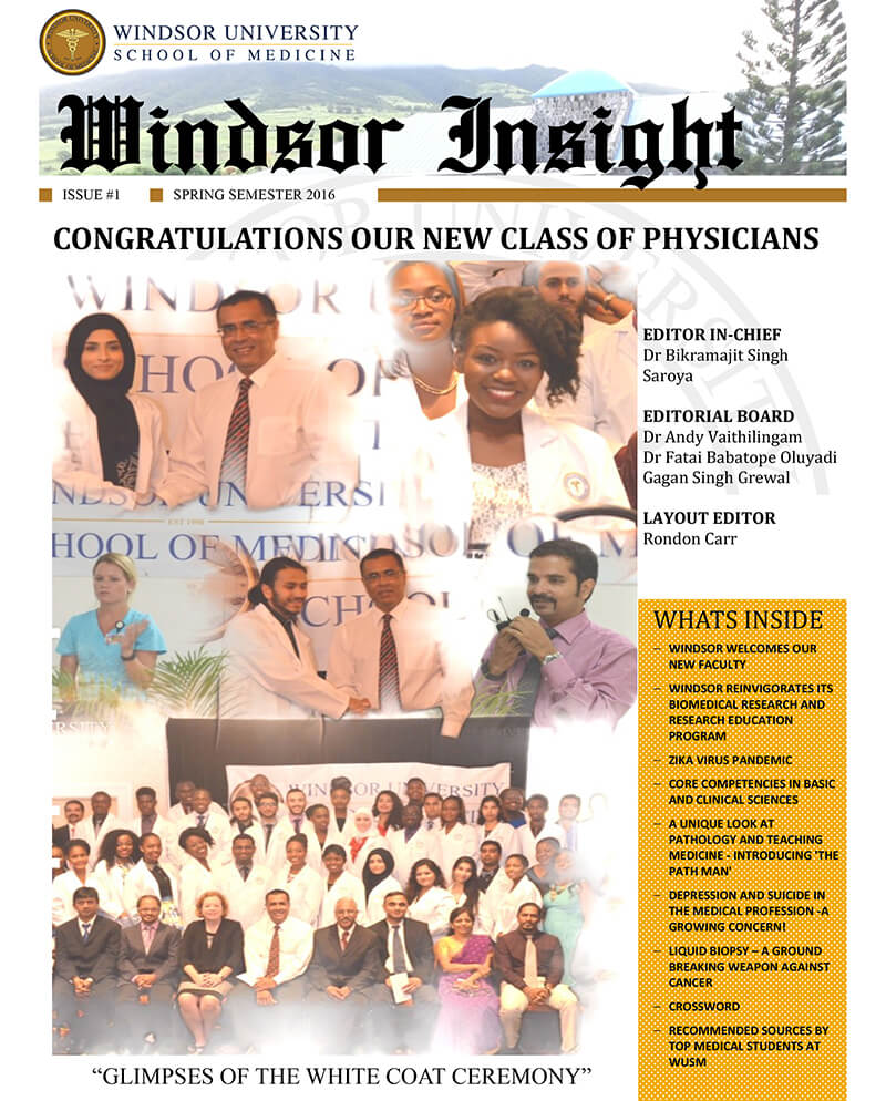 Windsor Insight Spring 2016